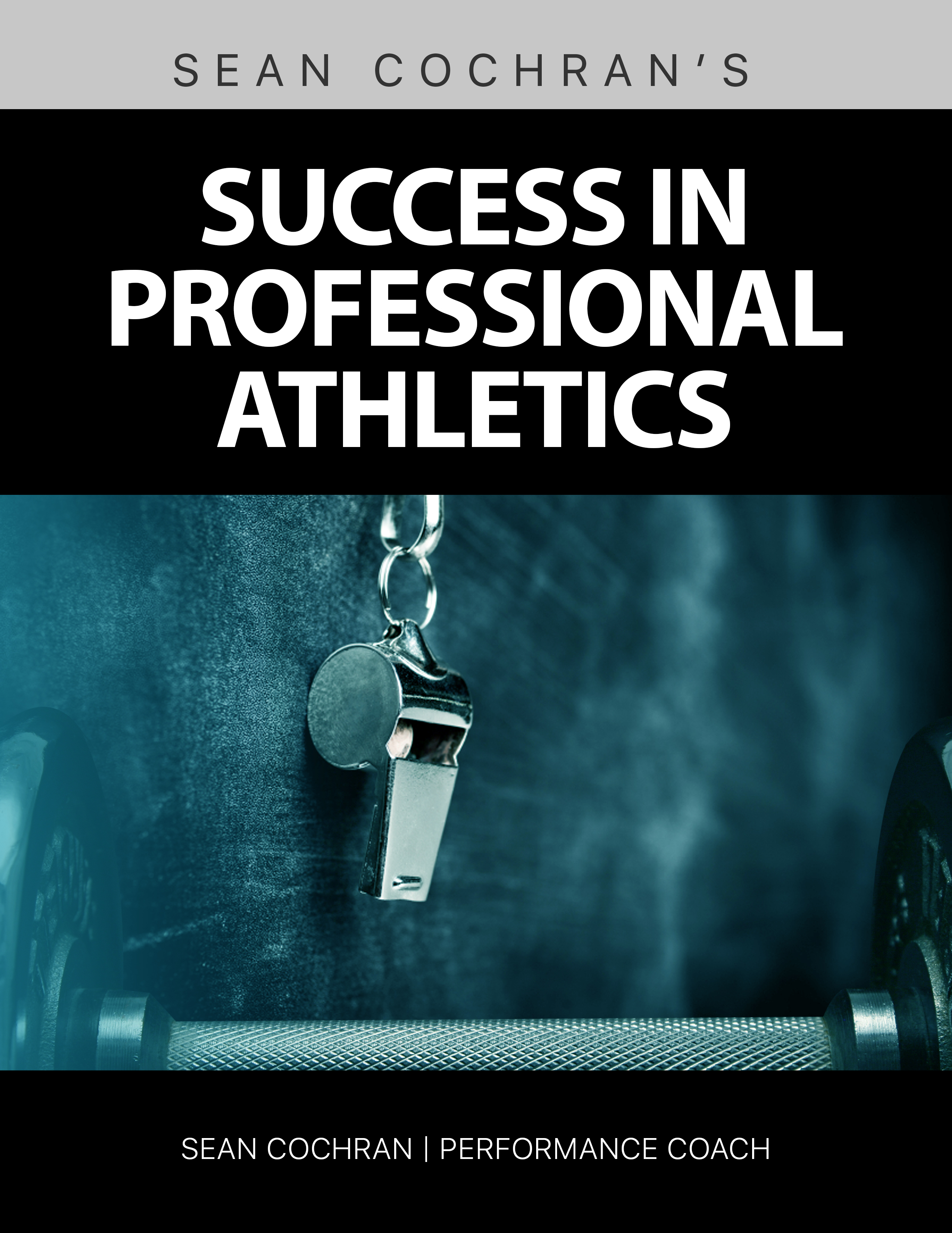 an analysis of the sports imagery as an addition to an athletes success Follow-up analyses indicated that participants who reportedly engaged in ten  hours  mental imagery and self-talk strategies are implemented by athletes in  order to  key words: sport psychology, performance enhancement  in addition , mckenzie and howe (1997) reported that engaging in a 15- week.